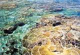 Coral Beach Lagoon
