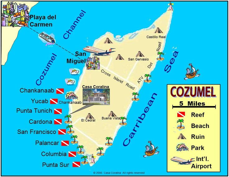 Mudgee dive and travel - Cozumel dive sites ...